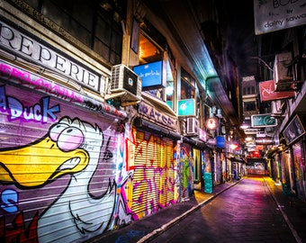 Melbourne Street Art Photography Graffiti Photo Lounge Wall Art Duck Centre Place Boyfriend Gift for Him 12x18in Print