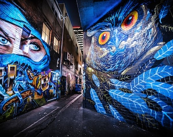 Ninja Mask, Street Art Graffiti, Melbourne Photography, Apartment Gift, Street Art Poster, Owl decor, Australian made, blue wall art