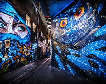 Ninja Mask, Street Art Graffiti, Melbourne Photograph, Apartment Gift, Teen Room Decor, Australian made, Spray Paint wall art, Blue Owl