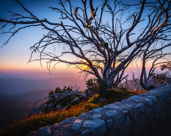 Australia Wall Art, Panoramic Print, Mount Buffalo National Park, Extra Large Art, Mountain Decor, Landscape Photo, Christmas Gift for him