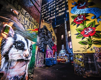 Street Art Print, Graffiti Wall Art, Melbourne Australia, Photography Poster, ACDC Lane, Sugar Glider Possum, Fathers Day Gift for Him