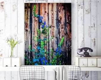 Latvian Poster, Flower Photo Print, Nature Photography, Rīga Latvija, large canvas wall art, wooden backdrop, blue and green, Travel Poster