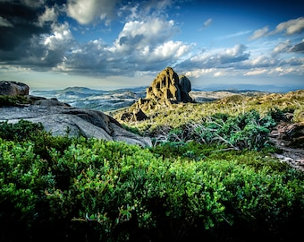 Australia Photography, Mount Buffalo, Nature Prints, Panoramic Wall Art, National Park Poster, Large Home Decor, Landscape Canvas, Gift for