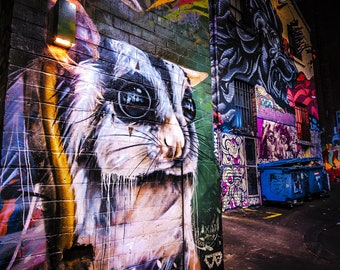 Melbourne Graffiti, Melbourne Print, ACDC Lane, Street Art Wall Art, Australia Gift, Color Street, Possum Art, boyfriend gift for him, photo