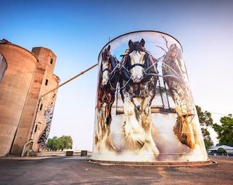 Silo Art Trail, Street Art Photo, Graffiti, Australian Made, travel photography, wall decor, extra large canvas, Birthday Gifts, Melbourne