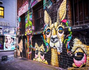 Graffiti Wall Art, Street Art Poster, Melbourne Australia, kangaroo art, teen room decor, Extra large, Photography gift, boyfriend birthday