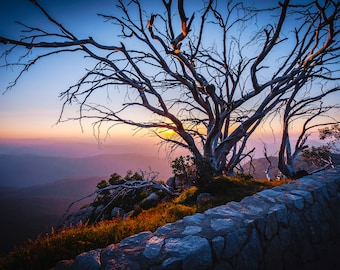Australia Wall Art, Panoramic Print, Mount Buffalo National Park, Extra Large Art, Mountain Decor, Landscape Photo, Christmas Gift for him