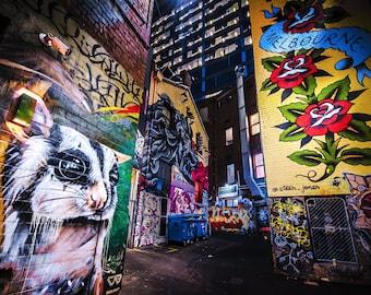 Street Art Print, Graffiti Wall Art, Melbourne Australia, Photography Poster, ACDC Lane, Sugar Glider Possum, Mothers Day Gift for Her