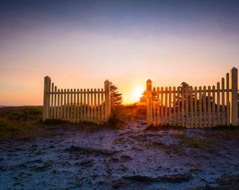 Beach Sunset Print, Victoria Australia, Great Ocean Road, Twelve Apostles, Extra Large Wall Art, Coastal Decor, Blue Herring, photography