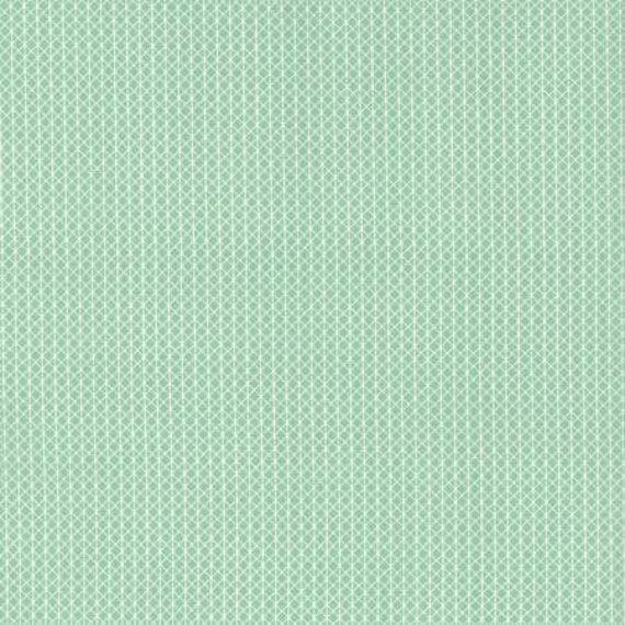 Cotton + Steel Basics - Netorious - Jam Jar Fabric-C5000-003- Cotton and Steel/RJR, Sold by the 1/2 yard or the yard
