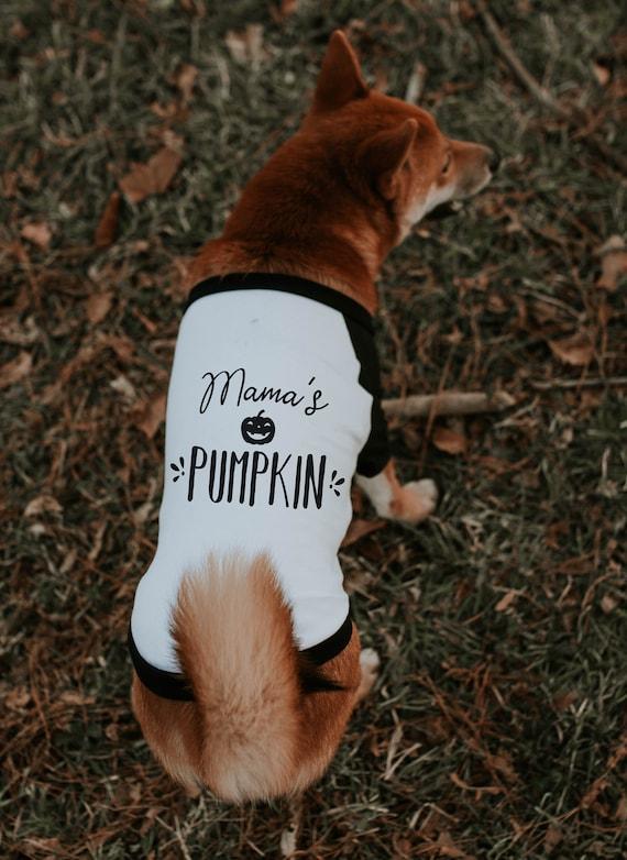 NEW COLORS! It/'s Scary Typography Halloween Dog Shirt Dog Raglan or Tank Black White Tee Ready to Ship Halloween I/'m So Cute