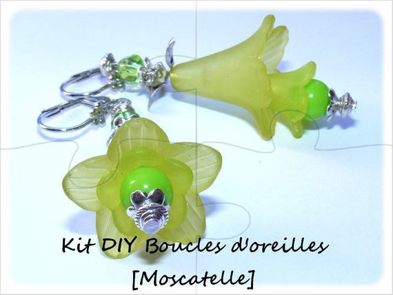 """DIY"" Kit earrings to make yourself [muscatel]"