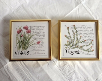 Janet T Francoeur Framed Art Chives and Thyme Calligraphy and Watercolor 1993