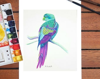 Colored parrot, giclèe fine art print of my original watercolor, A5, gift idea for birdwatching enthusiasts, home office decoration, art.