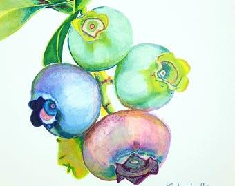 Blueberries, print, giclée fine art, original artwork, drawing on paper, gift idea for new kitchen, home office decoration, modern wall art.