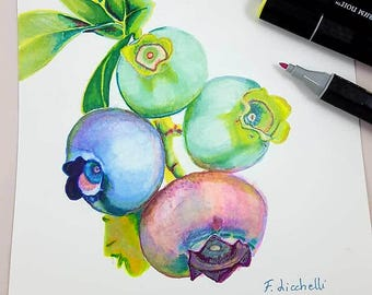Blueberries painting. Original drawing by Fracesca Licchelli. Alchoolic markers on paper. Gift idea for birthday. Kitchen, restaurant decor.