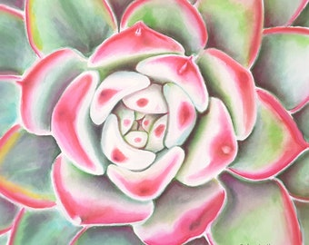 Succulent watercolor, echeveria, original painting by Francesca Licchelli, gift idea for succulents lovers, home office decoration, wall art