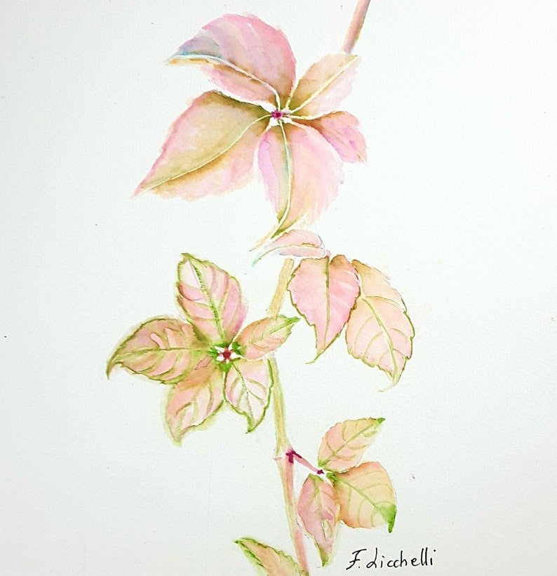 Pink maple leaves watercolor, original square painting, floral painting,  bedroom decoration wall art, gift ideas for women, botanical art
