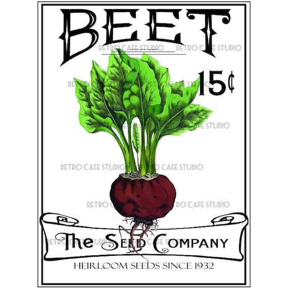 vintage illustration beet seed packet digital download etsy rh etsy com seed packet clipart free seed packet clip art free