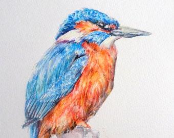 Kingfisher painting, watercolor painting, realistic painting, traditional painting, kingfisher drawing, inktense