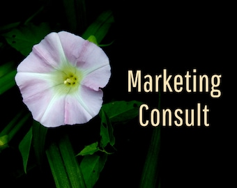 Marketing Consult, Marketing Tips, Sales Help, Copy Writing Services. Website Marketing Copywriting, Entrepreneur and Artist Marketing