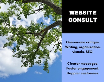 Website Consultation - On-on-One Website Critique - Website Review - Website SEO Copywriting - Website Copy Writer - Ask for 50% Off!