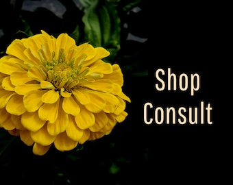 Etsy Shop Critique, Shop Consult, Etsy Content Writer, Sales Writer, Marketing Writer, Etsy Writer, Business Advice, Writing Services