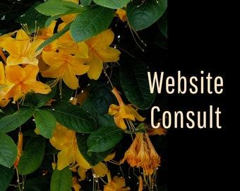 Website Consultation, Personalized Website Critique, Website Review, Website SEO Copywriting, Website Content Writer, Marketing Help