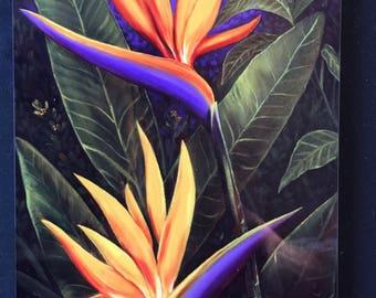 Bird of Paradise - Robert Thomas - 5x7 Plaque