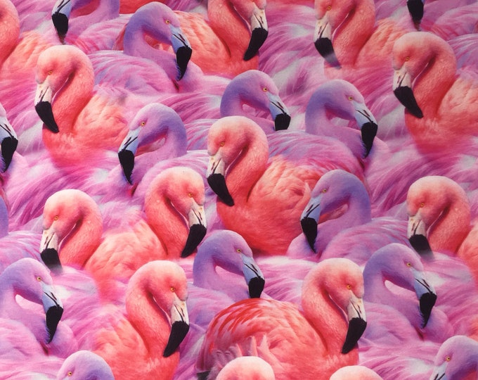 FLAMINGO COTTON ELASTANE,cotton spandex stretch knit, flamngo jersey, flamingo fabric, digital print, flamingo cotton spandex, stretch knit