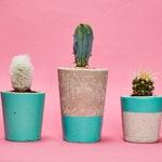 Concrete Cactus Pot Set of 3/ Concrete Planter, Cactus/ Succulent Plant Pot, Handmade, Turquoise - Includes Cactus and Succulent