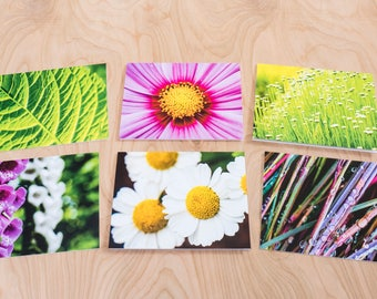 Pink & Green Color Photo Note Cards, Set of 6 Blank A2 Cards Featuring Flowers, Leaves and Grass