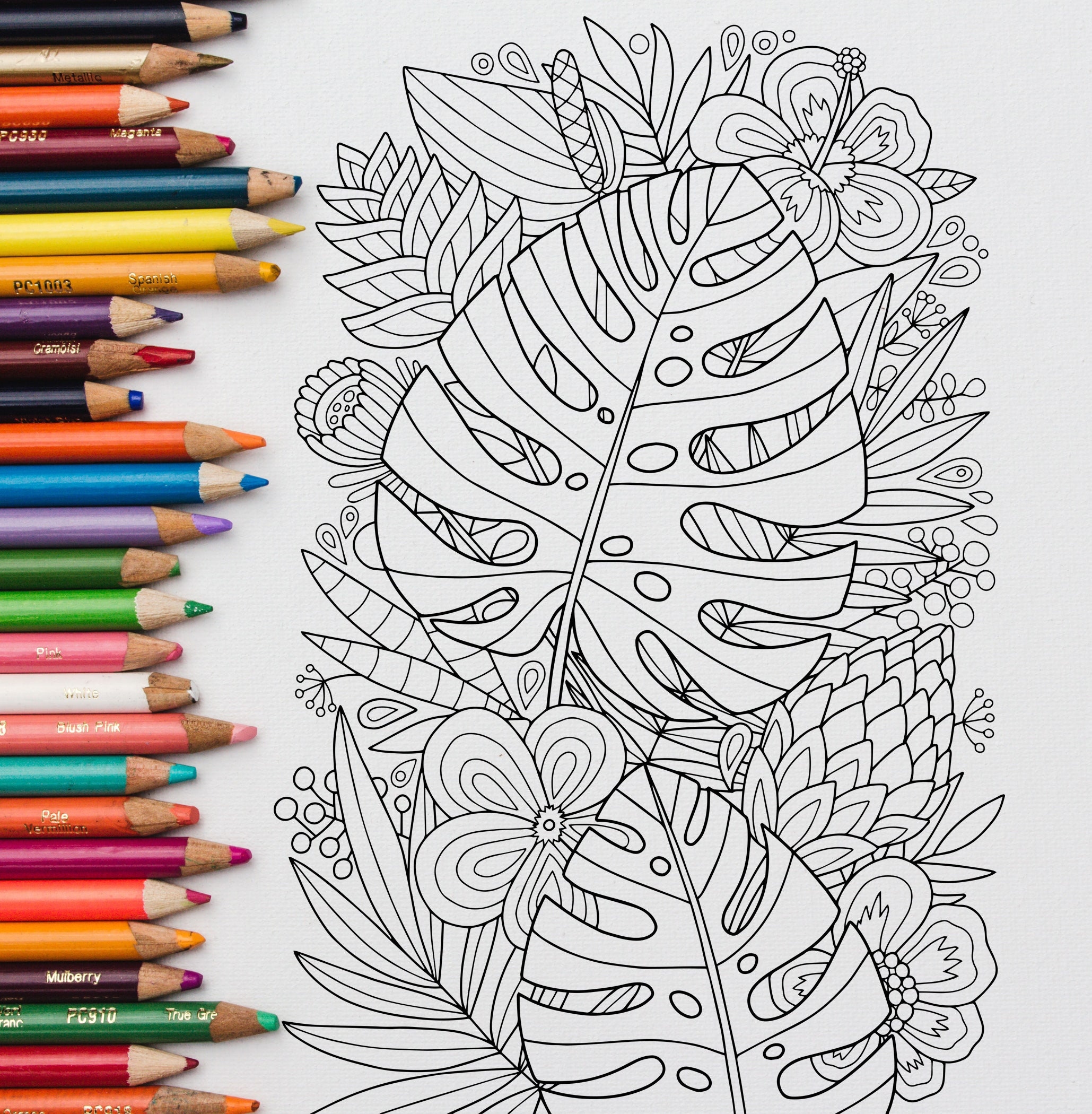 adult coloring page: monstera tropics. doodle art diy | etsy
