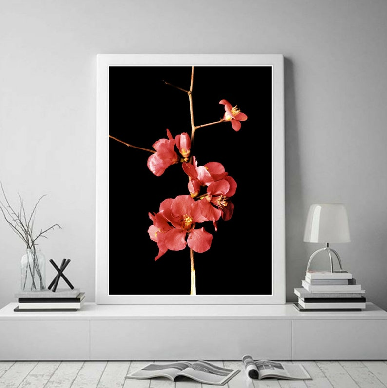 Red Floral Art Print Large Still Life Flower Photography Etsy