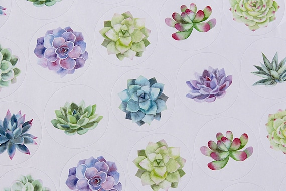 Floral Party Stickers, Wedding Stickers, Succulent Flower stickers, 37mm round printed stickers