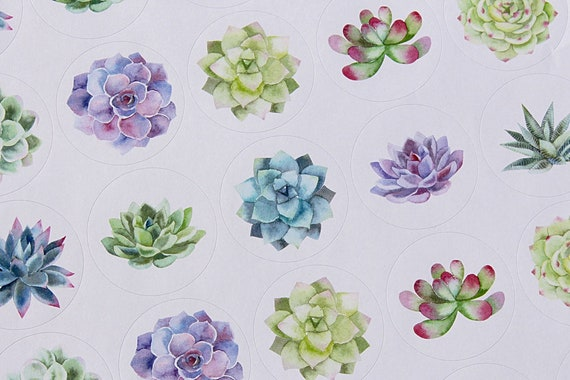 Party Stickers, Wedding Stickers, Succulent stickers, Stickers, 37mm round printed stickers