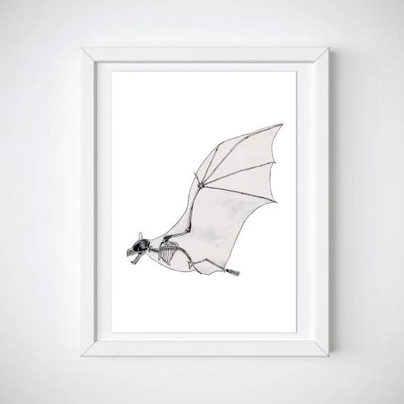 Fledermaus Skelett Druck Tier Anatomie beängstigend Flügel
