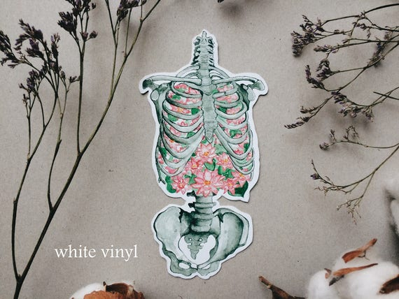 Brustkorb Anatomie Aufkleber: Rosa Blumen Aufkleber Geschenk   Etsy