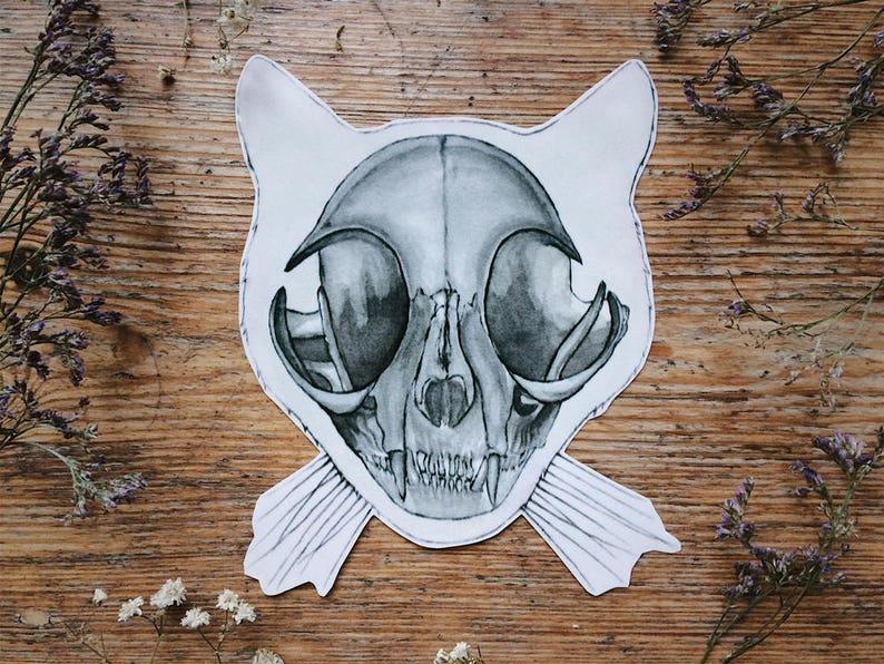 Cat Skull Vinyl Sticker Cool Laptop Sticker Animal Anatomy Etsy