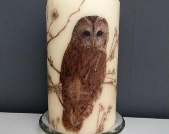 Decorative Owls Etsy