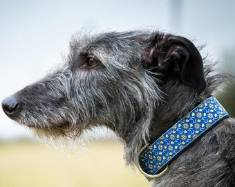 1.5 inch dog collar, wide dog collar, patterned dog collar, sighthound collar, hound collar, lurcher collar, greyhound collar, saluki collar
