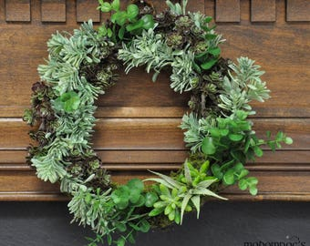 Aloe Star Succulent Wreath: Lively & Festive For Any Season or Occasion