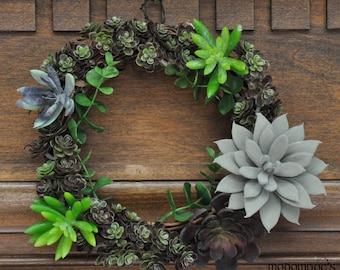 Festive Succulent Wreath: 8 Inch Grapevine Wreath Featuring a Beautiful and Bountiful Bunch of Bright Succulents