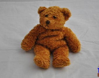 Vintage 2000 Plushland Bear