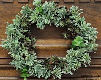 Bushy Succulent Wreath: Fun & Festive For Any Season or Occasion