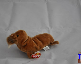 Paul the Walrus: Vintage 1999 Ty Beanie Baby
