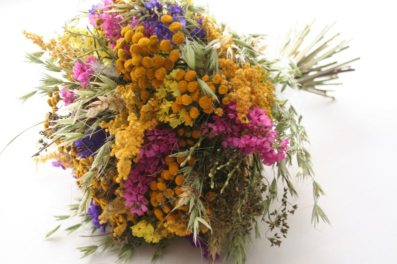 WILD FLOWERS Natural dried Tansy flower-green image 0