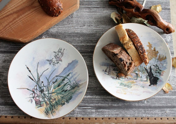2 vintage porcelain plates, tableware from France, shabby farmhouse decor, ASD150053