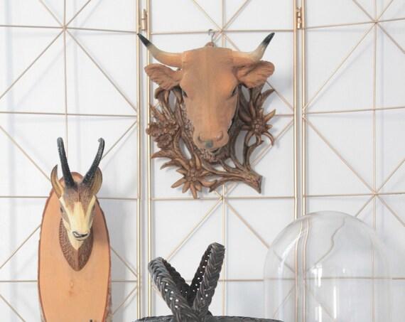 Trophées vintage, bêtes à cornes, Bouquetin, Vache des Alpes, Cornes, Décor mural, Taxidermie, cabinet curiosités, TRO181558