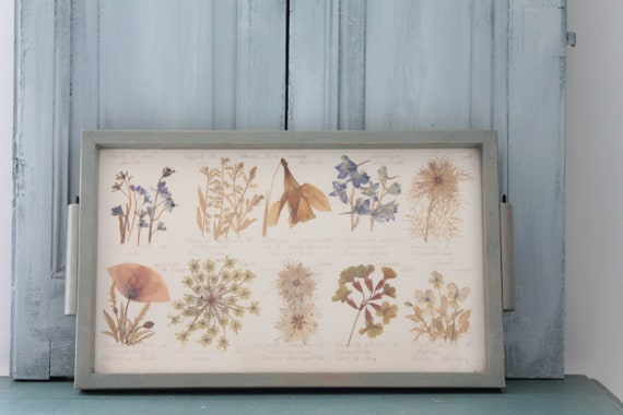 Tray frame pressed flowers, dried flowers, flowered frame, floral composition, CDR191821